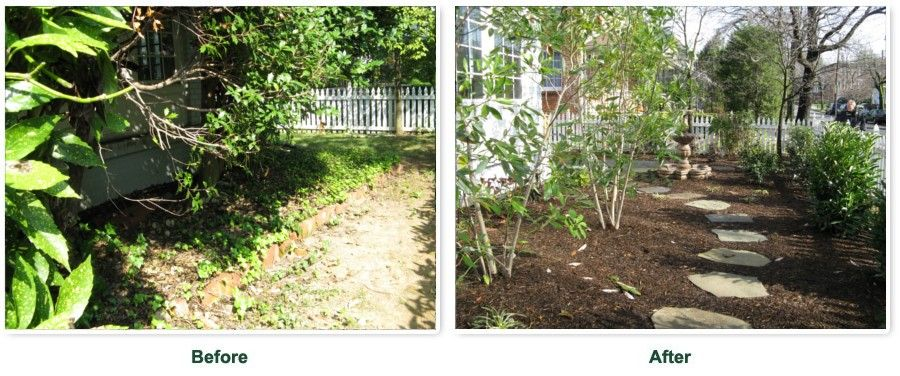 garden makeover before and after