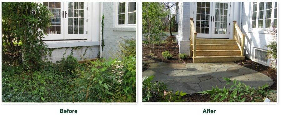 Before and after for an overgrown yard