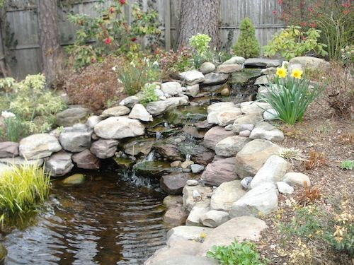 backyard landscape designs washington dc