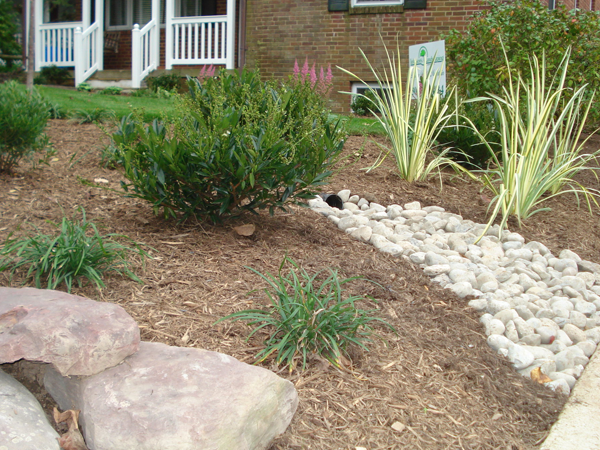 Garden with shubs and stone drainage