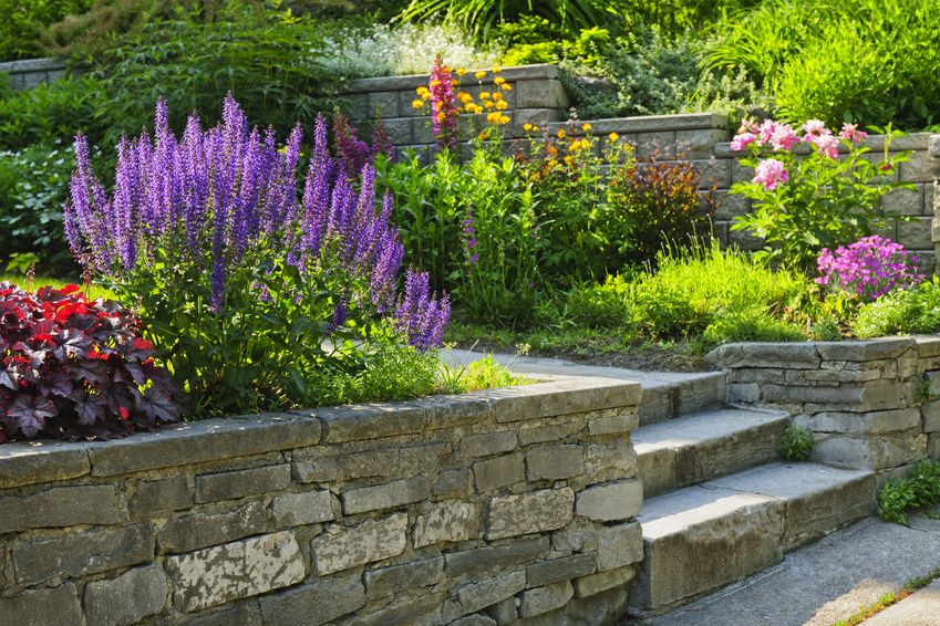 Garden with stone walls and steps