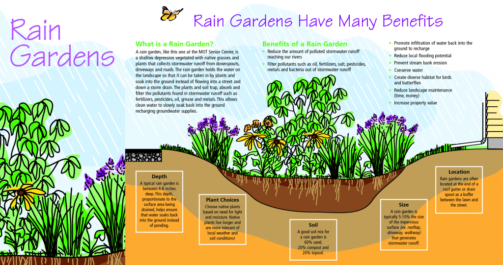Diagram explaining the benefits of a rain garden