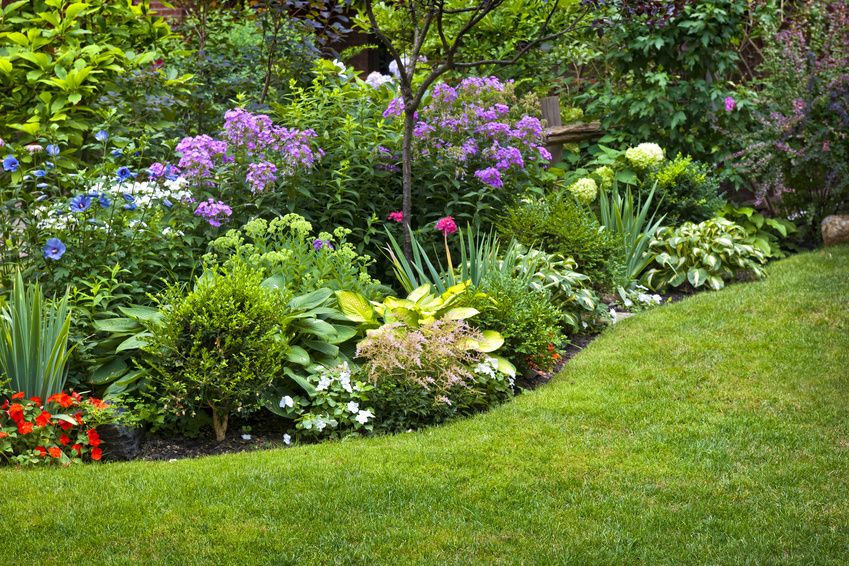 Landscaping: The Best Idea You've Ever Had