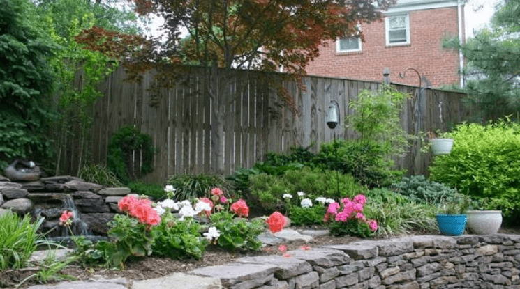 Landscaping Design – Plants, Shrubs, and Trees