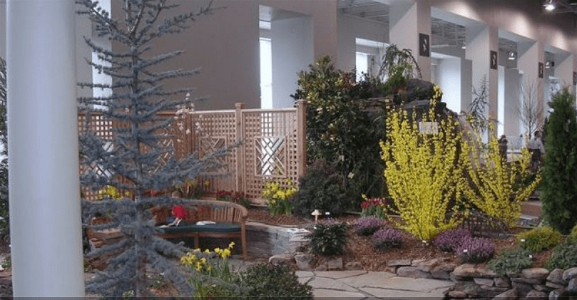 Landscaping – Plants, Shrubs, and Trees for the Shady Spots in Your Yard