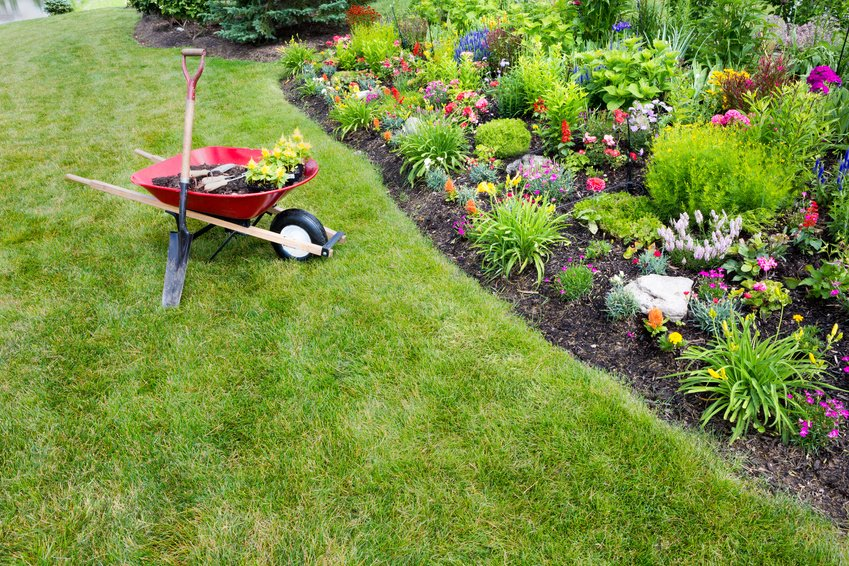 Plan Your Spring Lawn Care Now
