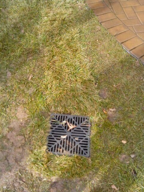 Drainage system with small screen