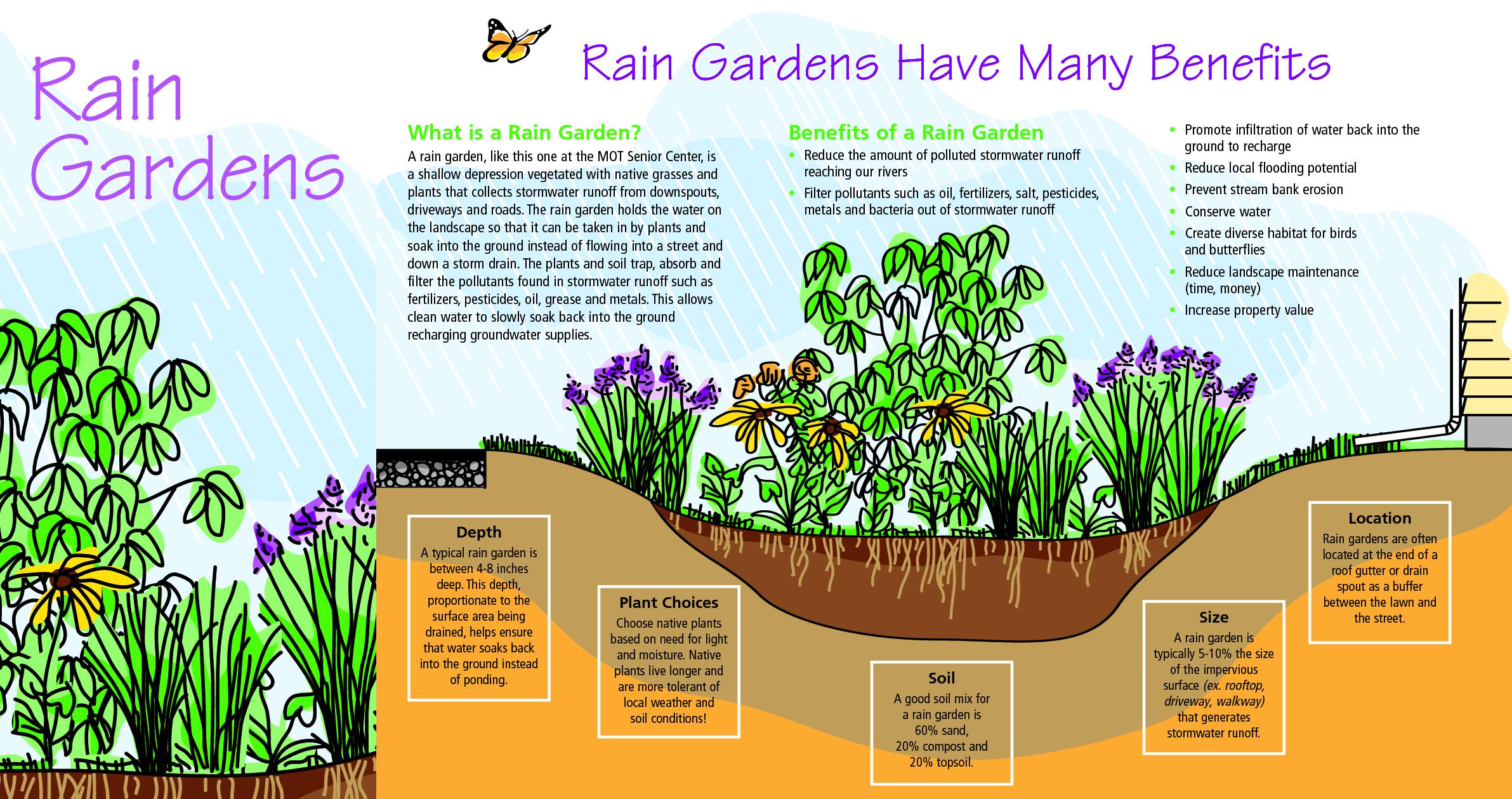 Diagram explaining the benefits of a rain garden