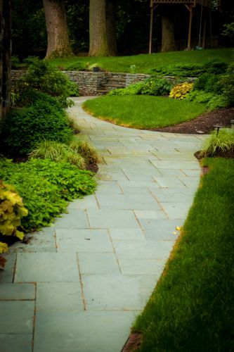 Stone pathway in backyard