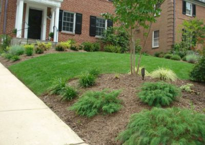 Front yard with plantings in front of brick house