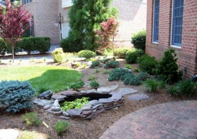 Yard with stone water filter and plantings