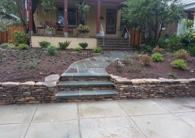 Front yard with stone steps and several plantings