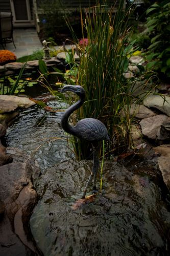 Pond water feature in backyard with flamingo iron statue