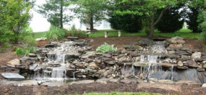 Water features in a garden