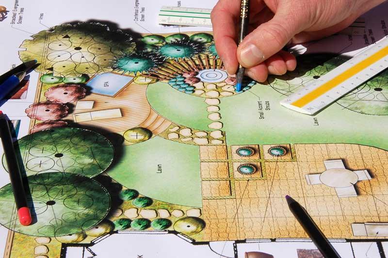 Drawing of landscaping plan