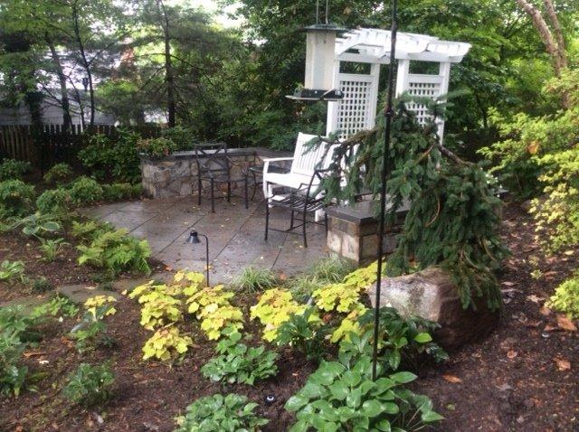 Planting & Patio
