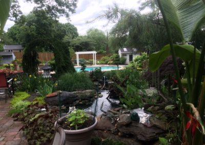 Plantings & Pergola