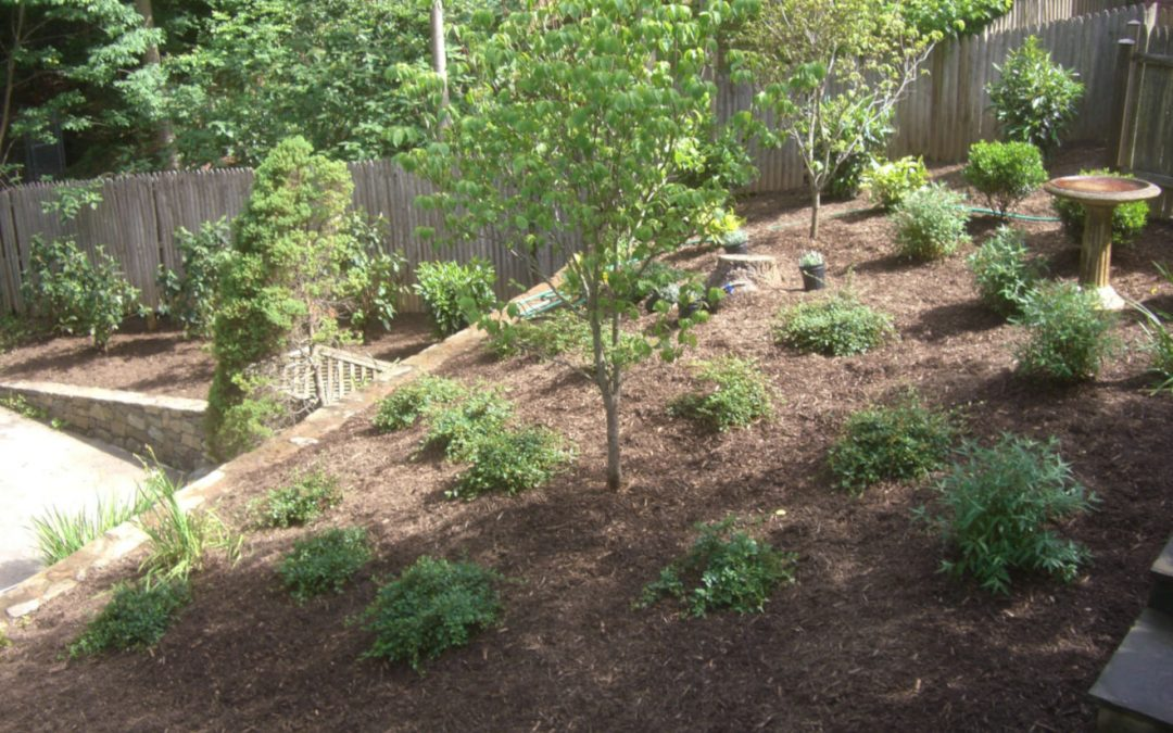 Low Maintenance Landscaping Can Help You Relax
